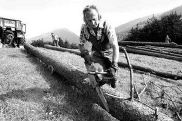 Pri sezónnych prácach v lesníctve alebo poľnohospodárstve nie je podľa zamestnávateľov únosné prijať ľudí na riadny pracovný pomer počas celého roku.