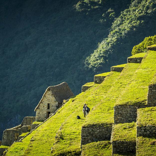 Terasy na Machu Picchu dlhé roky ukrývala tropická vegetácia.
