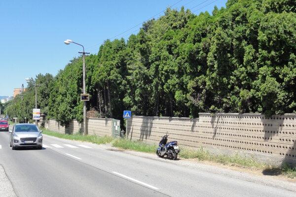 Chodník medzi cestou a múrom cintorína, na ktorý sa odvoláva RSÚC Nitra, neexistuje. Ukazuje to aj naša snímka.