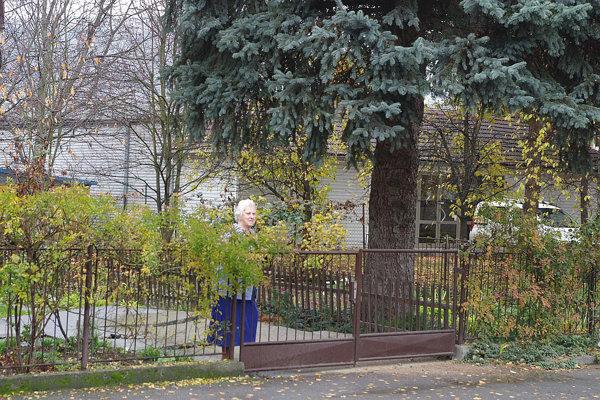 Pani Lieskovská hovorí, že so stromom, ktorý je aj nositeľom spomienok, sa budú ťažko lúčiť. Chcú, aby ešte urobil radosť pred Vianocami.