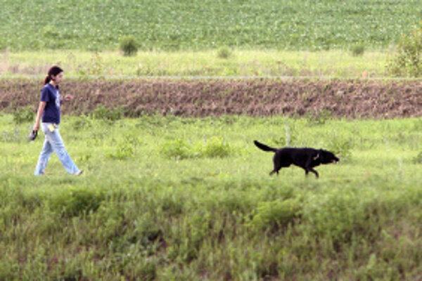 V Prievidzi majú psy voľný výbeh na vyznačených miestach.