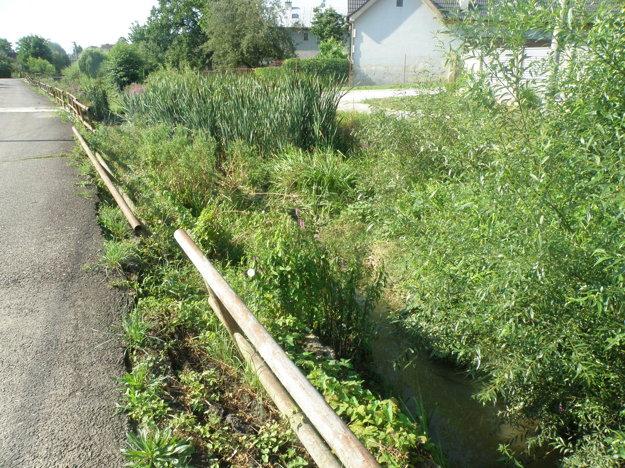 Potok Lubená je zarastený rastlinami, navyše sa v ňom zosúvajú panely, v ktorých je osadené aj zábradlie.