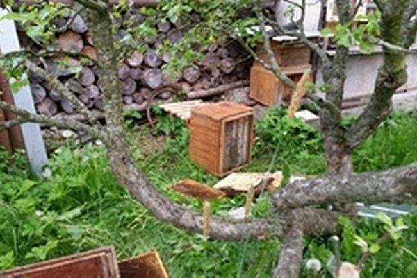 Medveď narobil škody na včelstve u Jána Zaťku v Pribyline.