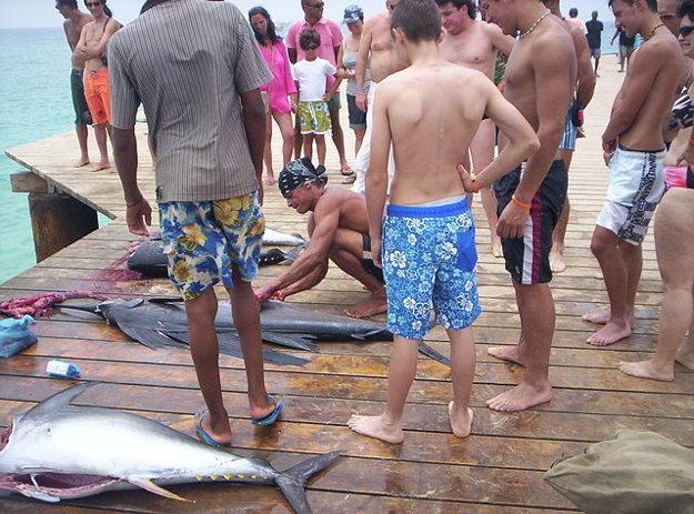 Rybári v Santa Maria spracovávajú ryby po ulovení tradičným spôsobom.
