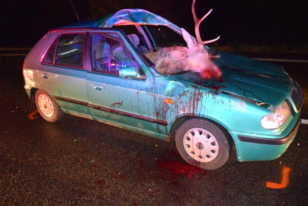 Nehoda sa skončila smrťou zvieraťa, vodič utrpel ľahké zranenia.