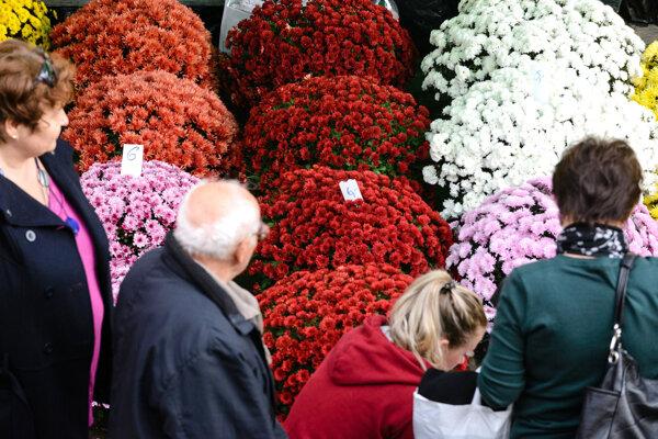 Chryzantémy budú ponúkať predajcovia aj na trhu na Námestí slobody v Prievidzi.