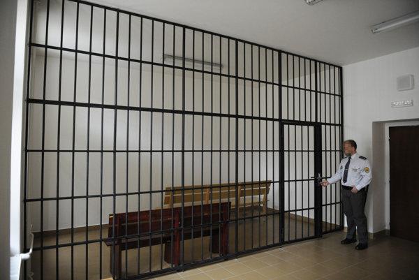 Voľby sú aj v Ústave pre výkon trestu odňatia slobody v Želiezovciach.