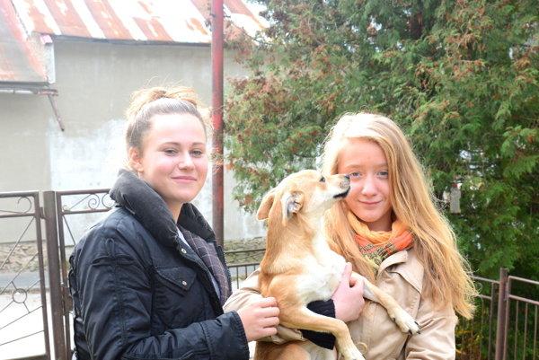 Žiačky zDobšinej zachránili zrazeného psíka. Erika (vľavo) aKatka sa hrajú už so zdravým psíkom Sheila.