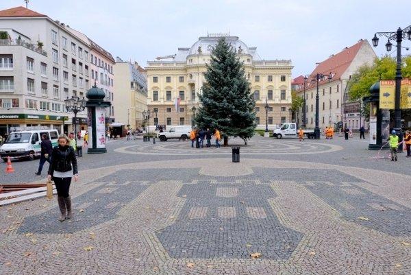 Smrek modrý mestskej časti Staré Mesto venovala rodina z Kráľovej pri Senci.