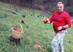 Hubár Miroslav Peiszer sa potešil bohatým trsom podpňoviek.