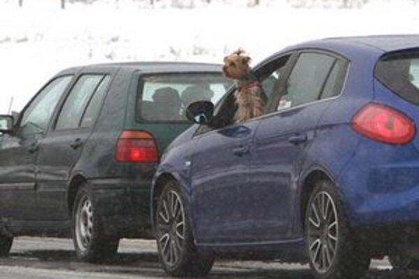 Úradníčka mala zabezpečiť bezproblémové prijatie žiadostí o schválenie dovezených automobilov.