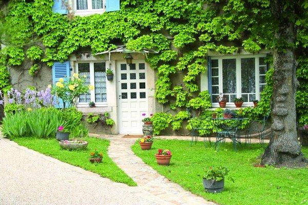 Porasty popínavých rastlín dokážu v priebehu rokov vyformovať celistvú živú fasádu, ktorá je zelenou oázou plnou života.