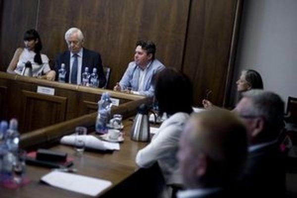 Zasadnutie výboru pre ľudské práva.
