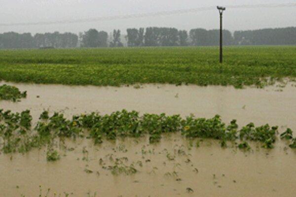 Po dažďoch stála voda na poliach hornej Nitry tento rok už niekoľkokrát.