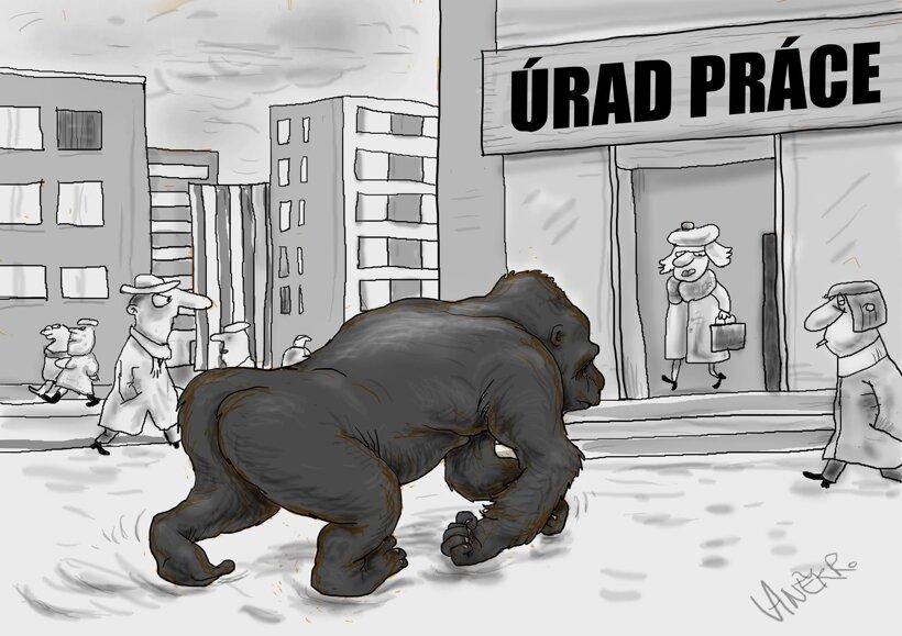 Nezamestnaná Gorila (Vaněk) 17. január