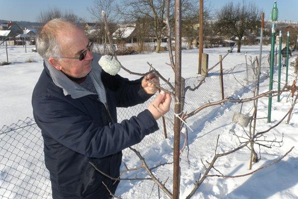 Ovocinár Miloš Polcer predpokladá, že ani tento rok nebude úroda niektorých druhov ovocia dobrá
