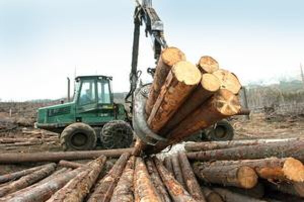 Revíry dostávali vyvolení, drevo mizlo. Lesy SR.