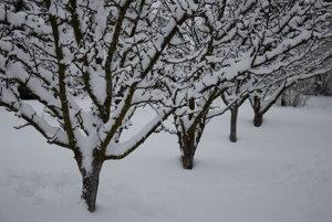 Tohto roku napadla v mestskej časti Milhostov vysoká vrstva snehu, najviac za ostatných 5 rokov, ktorá sa začína topiť.