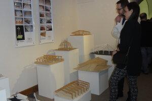 Výstava v Salóne galérie potrvá do 5. marca.