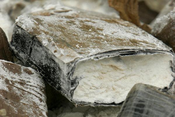 Bol pod banánmi. Nemeckí policajti našli kokaín za päť miliónov eur