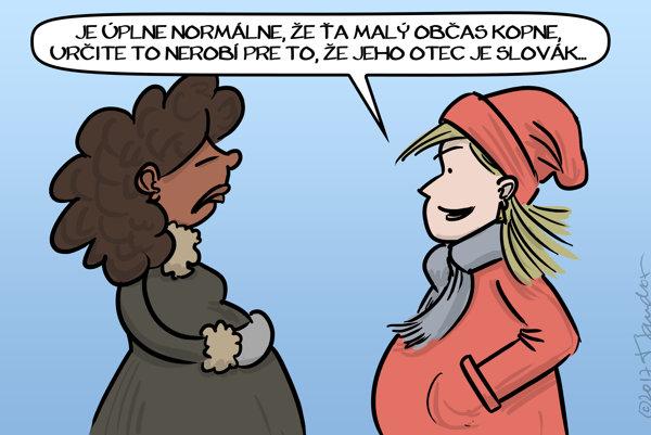 Rizikové tehotenstvo (Mandor)
