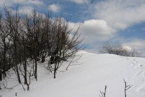 Tesne pod západným vrcholom Vihorlatu.