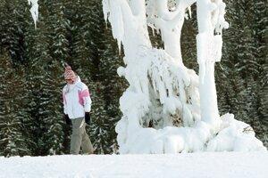 Koncom novembra 2008 sa už lyžovalo.