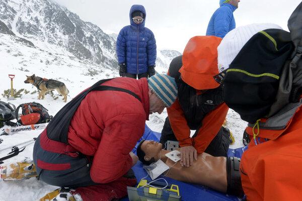 a snímke psovod-záchranár DušanTrizna zo Západných Tatier sleduje postup svojich kolegov pri resuscitácii obete lavínovej nehody s použitím defibrilátora.