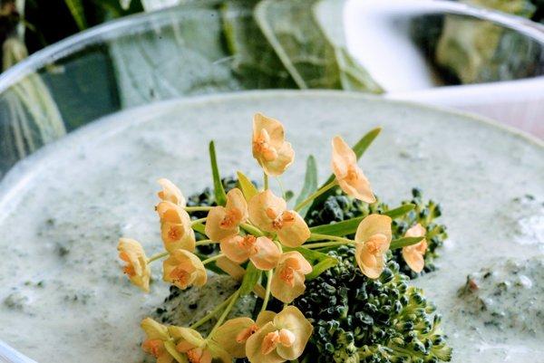 Žihľavová polievka s brokolicou