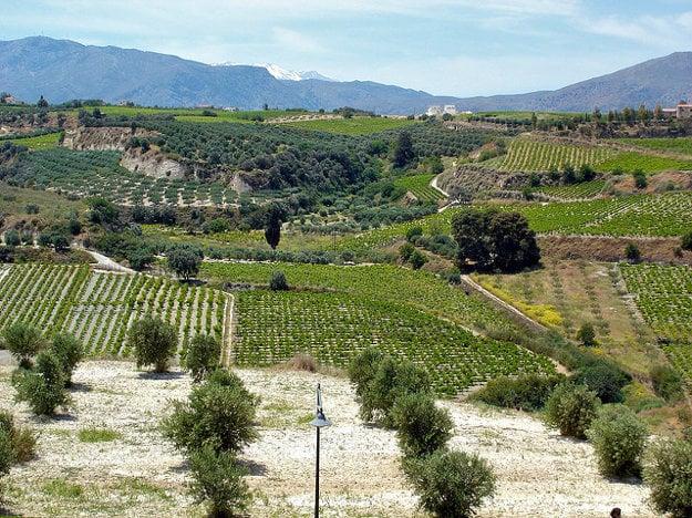 Heraklion je tiež významnou vínnou oblasťou.