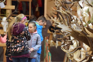 Výstava poľovníckych trofejí.