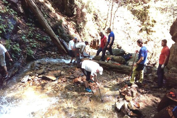 Dobrovoľníci mali počas jarnej údržby na ferrate veľa práce.