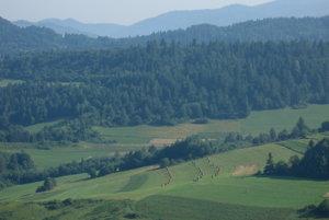 Lúky nad Lesnickým sedlom.