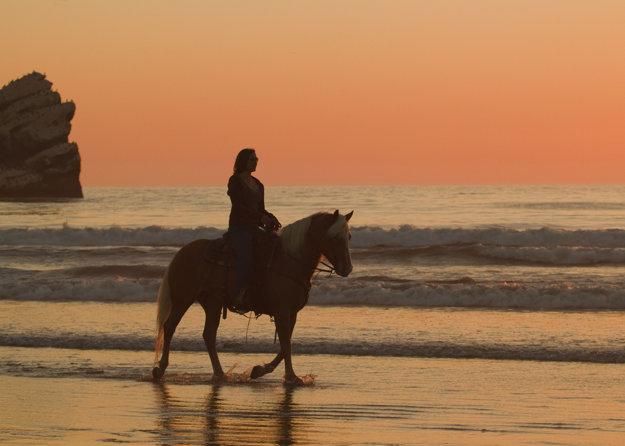 Zajazdiť si na koni môžu aj úplní začiatočníci.
