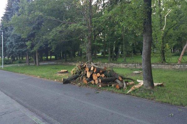 Kopy dreva z poškodených a zničených stromov budú v Prešove odstraňovať ešte dlho.