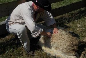 Kysucké múzeum v Čadci pripravilo pre návštevníkov na dnešnú nedeľu  celodenný kultúrny program venovaný ovčiarskemu remeslu.
