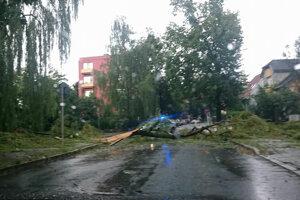 Polámaný strom na ceste v Prešove