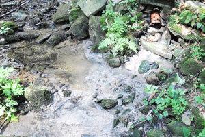 Z rúry vpravo hore vyteká voda zČOV. Nad ňou je potok čistý, pod ňou zanesený.
