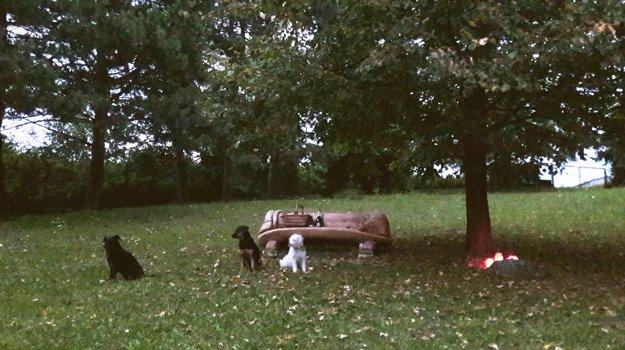 Odpočíva pod lipou. Na mieste, kde je jeho popol Ľuba Blaškovičová zapálila štyri sviečky.