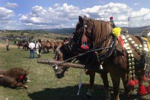 Festival sa tradične začína konským vozovým sprievodom.