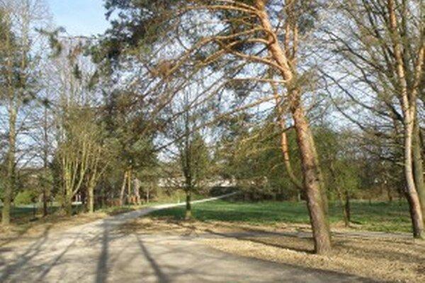 V bojnickej časti parku sú nad chodníkmi konáre.