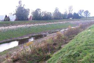 Kanál je v Sučanoch zarastený trávou a kríkmi.