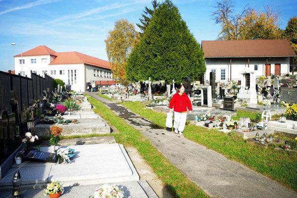 Starý cintorín v Považskej Bystrici.
