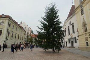 Vianočný stromček osadili na Hlavnom námestí 6. novembra 2017. Rozsvietia ho v prvý deň vianočných trhov, ktoré začínajú 24. novembra.