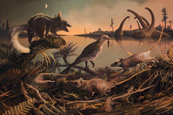 Malé krysovité tvory, ktoré žili pred 145 miliónmi rokov v tieni dinosaurov.