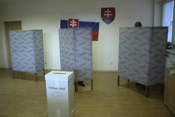 Voľby priniesli zmeny, ale mladých a ženy nechali spravidla za bránami Župného domu.