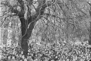Pri masových protestoch sa pre výhľad liezlo aj na stromy.