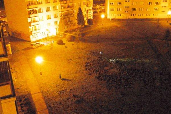Diviaky v noci plašili policajti.