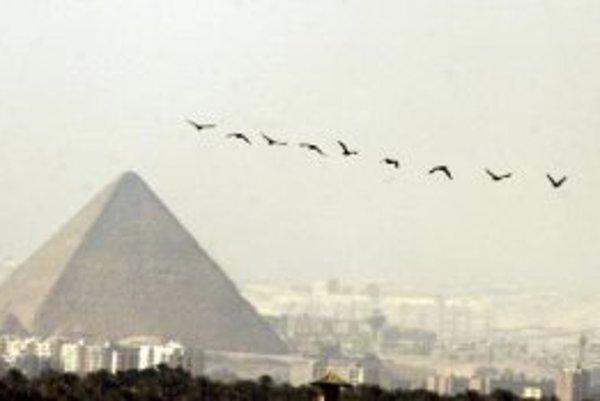 Kŕdeľ vtákov prelieta ponad pyramídu v Káhire. 14. februára 2007 potvrdili laboratórne testy prítomnosť smrtiaceho vírusového kmeňa H5N1 u 37-ročnej Egypťanky.