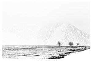 Black&White - 3. miesto: Jaroslav Pitoňák – 3ta3 (pri obci Vrbov, okr. Kežmarok)